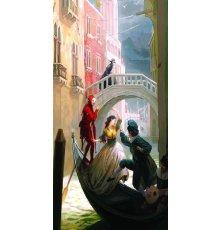 Дверь Цербер с фотопечатью Венеция ДФ-1013 фото
