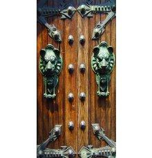 Дверь с фотопечатью Венеция ДФ-1026