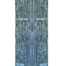 Дверь с фотопечатью Венеция ДФ-1042