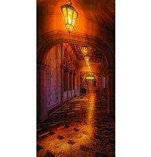 Дверь с фотопечатью Венеция ДФ-1073